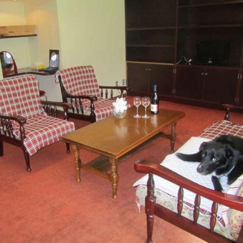 ペットとくつろぐ客室リビング