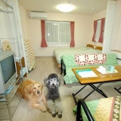 ペットと泊まれる客室