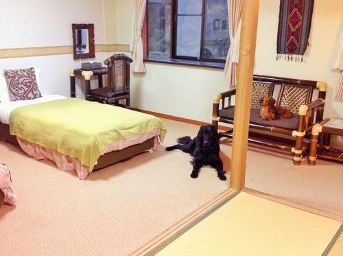 バリテイストの客室