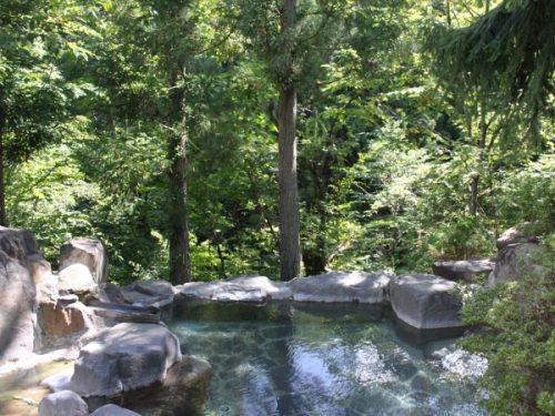屋根がついた大自然の中の露天風呂。