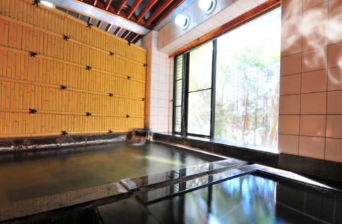 仙石原の森を望む温泉