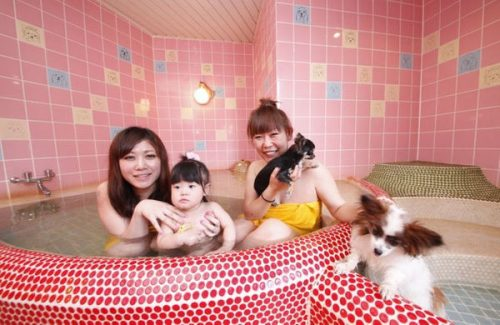 ペットと入れる家族風呂
